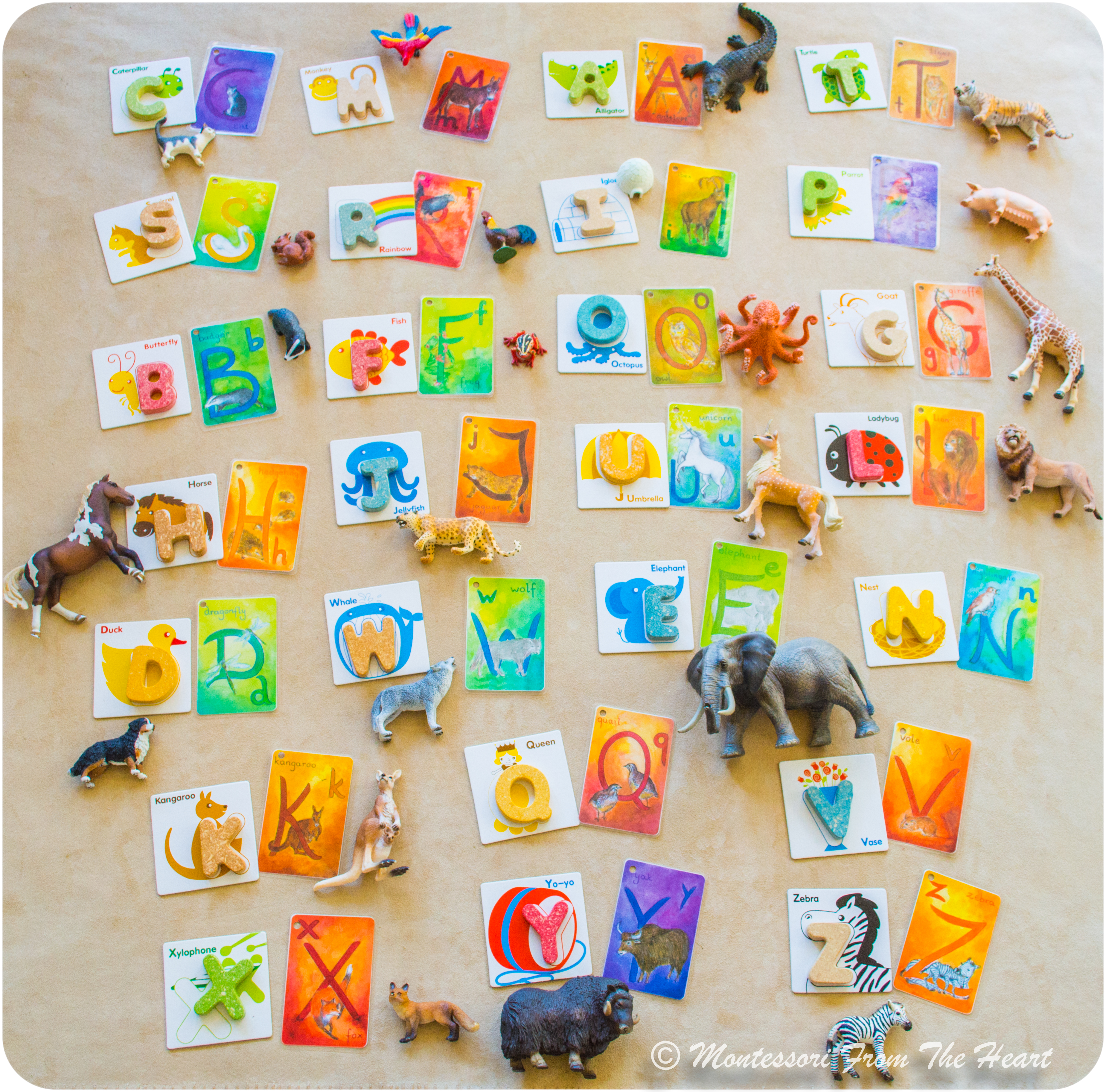 Montessori Phonetical Order Of Presenting Abcs Alphabet Letters Montessori From The Heart